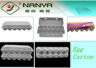 Disposable Paper Molded Egg Carton / Egg Box / Egg Tray with 10 Cavities